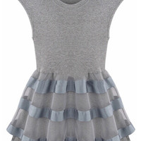 Grey Sleeveless Mesh Layer Sheath Mini Skater Dress