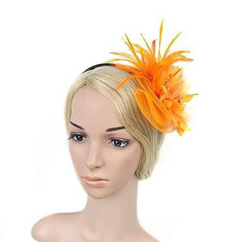BAOBAO Women Flower Feather Net Veil Fascinator Hair Clip Headpiece Hat Cocktail Party