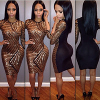 Sexy Sequined Bodycon Dress