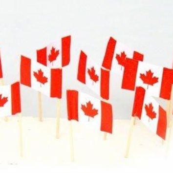 Canada | Canadian Flag Toothpicks 100