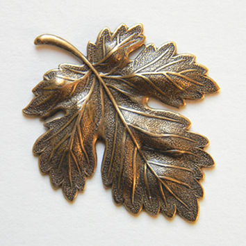 Brass Ox Maple Leaf Stamping Dapped Dapt 47mm x 38mm - 1 pc.