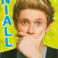 "NIALL HORAN - ONE DIRECTION - 1D - 11"" x 8"" MAGAZINE PINUP - POSTER - 002"