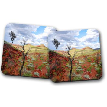 Australian Outback Set of Coasters, Home Decor, Kitchen Sets, Table Designs, 2 Coasters