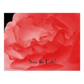 Save the Date 75th Birthday Party, Coral Rose Postcard