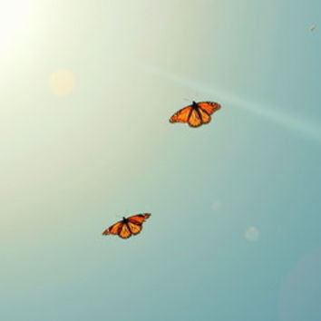 Monarch Sky Love Art Print by RichCaspian