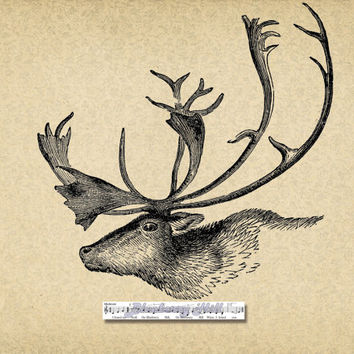 Vintage Deer, Digital  printable ClipArt,Typography, Printable Digital Download for Iron,Papercrafts,Transfer,Pillows,