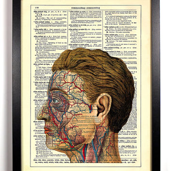 Anatomy Of The Face Upcycled Dictionary Art Vintage Book Print Recycled Vintage Dictionary Page Buy 2 Get 1 FREE