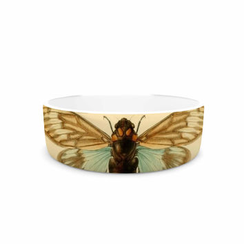 "Suzanne Carter ""Vintage Cicada"" Bugs Pattern Pet Bowl"