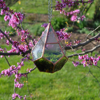 Teardrop Terrarium , glass terrarium with a hinged door -- stained glass -- copper or silver color -- eco friendly