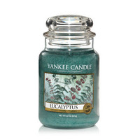 Eucalyptus : Large Jar Candles : Yankee Candle