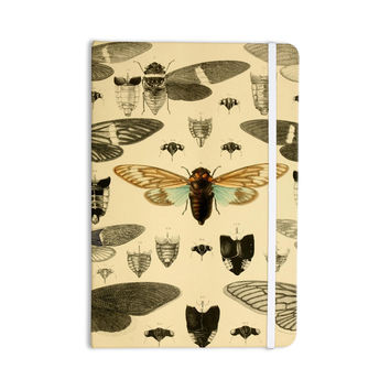 "Suzanne Carter ""Vintage Cicada"" Bugs Pattern Everything Notebook"