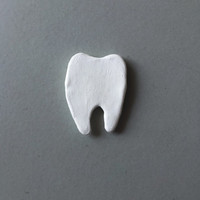 Tooth Magnet - Polymer Clay Magnet - Teeth Magnet - Dentist Magnet - Gift for Dentist - Tooth Fairy Gift - White Magnet