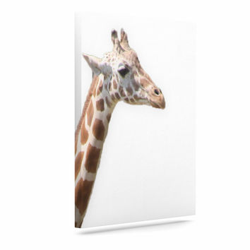 "Sylvia Coomes ""Giraffe"" Animals Photography Canvas Art"