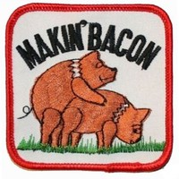 Makin Bacon Pig Hog Embroidered Iron on Biker Patch