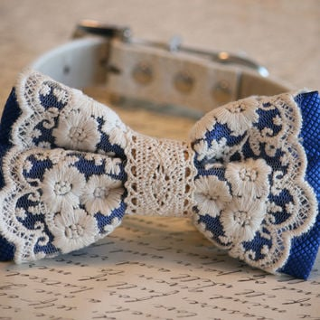 Royal Blue Lace Dog Bow Tie, Vintage wedding, Rustic, Bohemian, Proposal idea