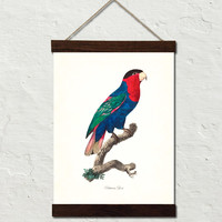 Vintage French Parrot No. 6 Canvas Wall Hanging