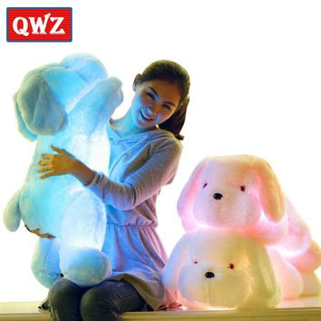QWZ 50CM Length Creative Night Light Luminous LED Lovely Dog Stuffed and Plush Toys Best Gifts for Kids and Friends
