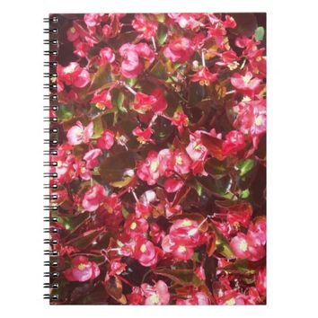 Scarlet Begonia Spiral Photo Notebook