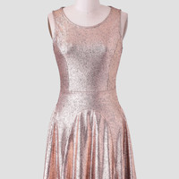 Full Of Light Metallic Dress