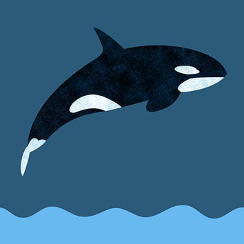 DIY Printable Greeting Card - Orca - Black, White & Blue. Killer Whale Template Design - 5x7. Flat Graphic style - textured orca drawing.