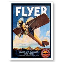 Vintage Airplane Fruit Label Advertisement Post Card from Zazzle.com
