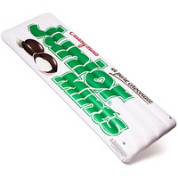 Junior Mints Pool Float