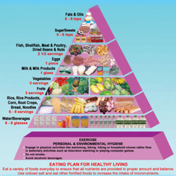 Food Pyramid Teens poster EDUCATIONAL diet RECOMMENDATIONS 24X36 illustrated