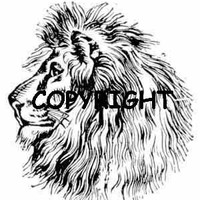 Lion Head Profile Rubber Stamp New Mounted Rubber Stamp