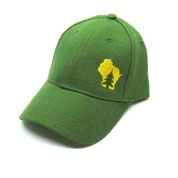 Wisconsin Hat - Green Hemp Snapback  - pine tree in wisconsin yellow state
