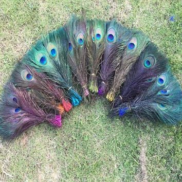 """5pcs Staining Peacock Tail Feathers about 10-12 Inches"""""""