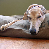 MANY canvas colors - Duvet Dog Bed Cover XL 38x50 - Use four standard sleeping pillows as stuffing