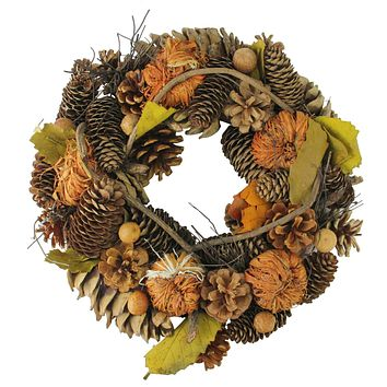 "13.25"" Autumn Harvest Pine Cones and Gourds Artificial Thanksgiving Wreath - Unlit"