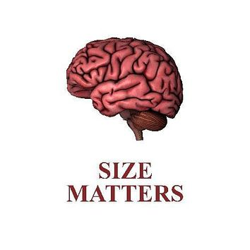Human Brain Size Matters Art poster Metal Sign Wall Art 8in x 12in