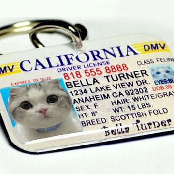 Dog Tag Pet Tag Custom Name Tag California Driver License by ID4Pet