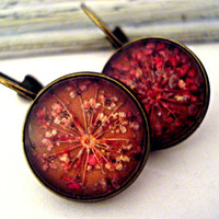 Real flower earrings - dried red flowers under real glass in bronze settings with french clips