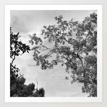 Zen trees up in the air Art Print by Guido Montañés