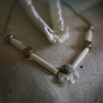 canis pyrite // coyote molar & pyrite necklace