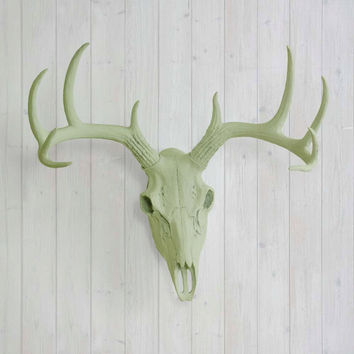 The Large Sage Green Faux Taxidermy Resin Deer Head Skull Wall Mount | Sage Green Deer Head w/ Colored Antlers