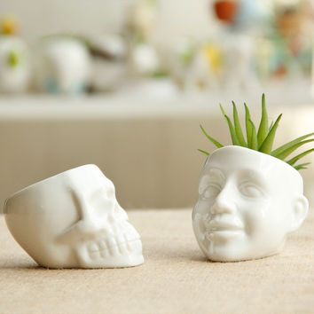 Small Flower Pot White Ceramic Cool Skull Planter