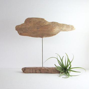Driftwood Sculpture - Found Object Art - Neutral Natural Wood Home Decor