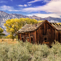 Rovana Homestead Photograph by Kathleen Bishop - Rovana Homestead Fine Art Prints and Posters for Sale