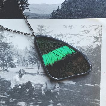 Peacock Swallowtail Butterfly Wing Shaped Pendant