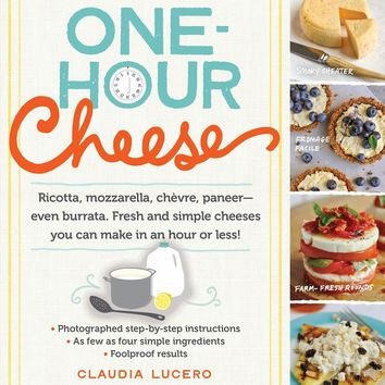 One-Hour Cheese Cookbook - Simple Cheeses You Can Make in an Hour or Less!