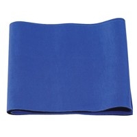 Sunny Health & Fitness Waist Support (Blue)