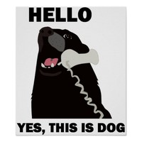 HELLO YES THIS IS DOG telephone phone