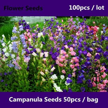 ^^Brightly Colored Campanula Seeds For Planting 100pcs, Novel Plant Perennial Flower Seed, Courtyard Campanula Bellflowers Seeds