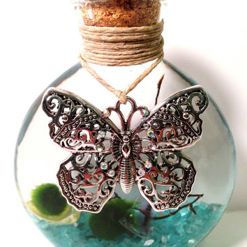 Marimos Terrarium in Half Moon Butterfly Bottle Green Gift Home Decor