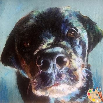 Dog Portraits From Photos 472
