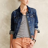 Pilcro Avie Denim Jacket Tinted Denim