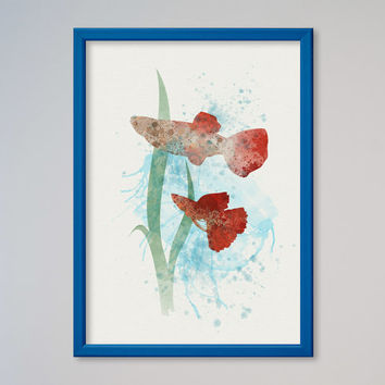 Aquarium Fish Guppy Watercolor Poster Print Watercolor Picture Illustration Art Watercolor Animal Fish Art Fish Lovers Gift Present
